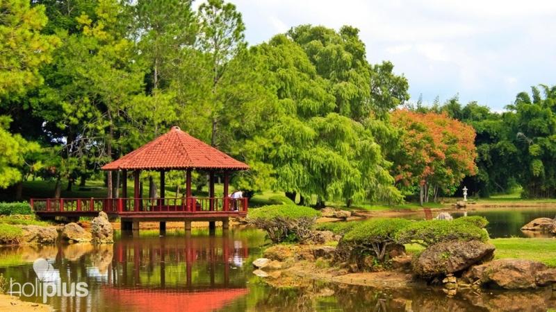 High Quality Japanese Garden At National Botanical Garden