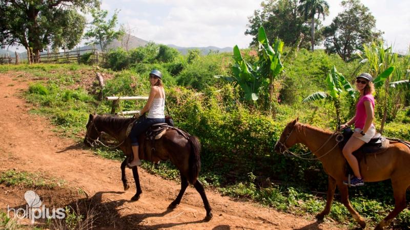 Reservar excursi n paseo a caballos por el valle de los - El valle de los caballos ...